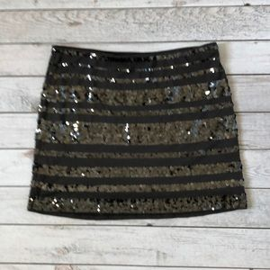Charcoal Gray Lined Skirt